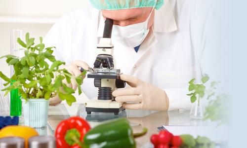 Scienza della Alimentazione